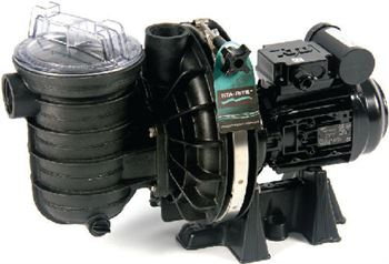 5P2RC-1 0.50hp 0.37kW Sta-Rite Pool Pump